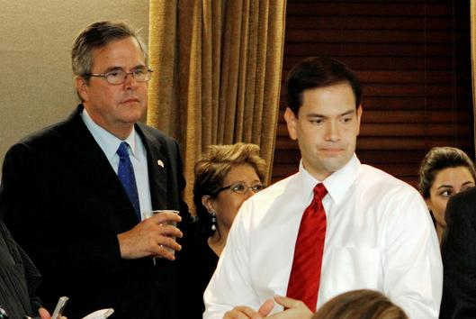 Jeb Bush and Marco Rubio President 2016: Insiders Say Bush, Rubio or Christie