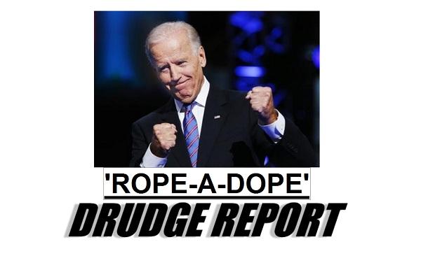 VP Biden Rope A Dope